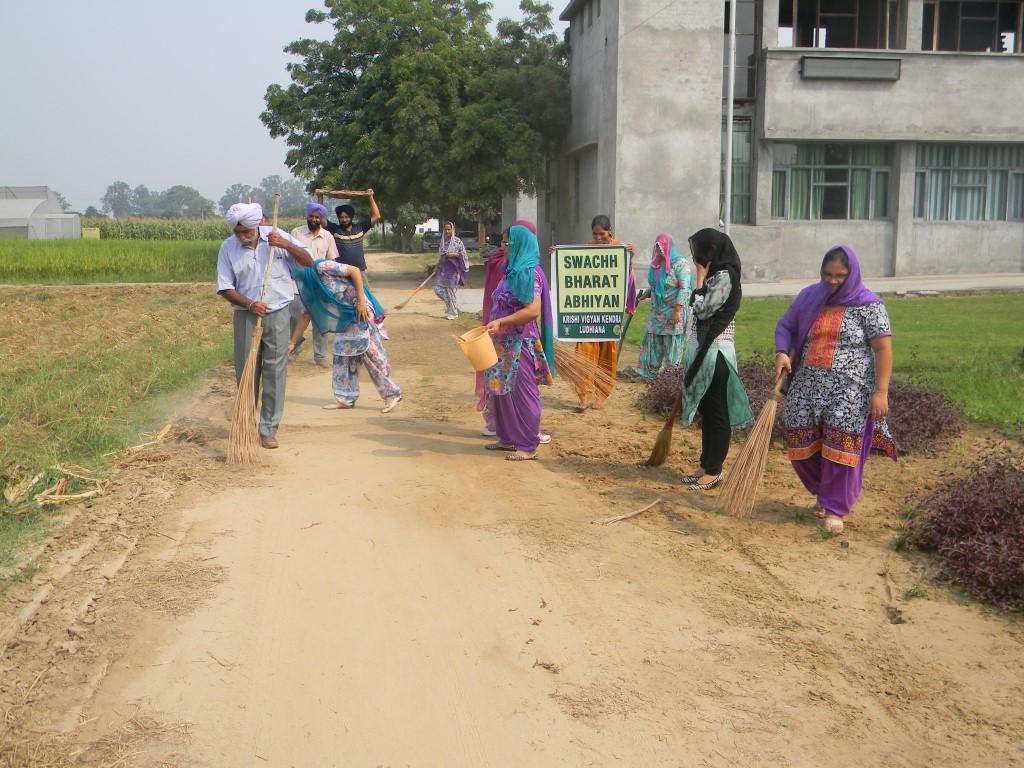 Image courtesy: kvkludhiana.com