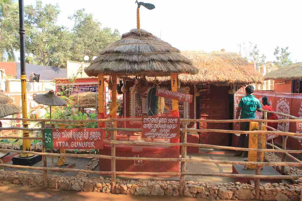 A scene from the Adivasi Mela